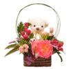 Teddy Kiss Occasion Arrangement from Clea Flower Boutique